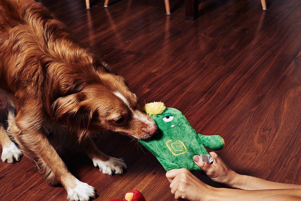 alien flex kestävä koiranlelu