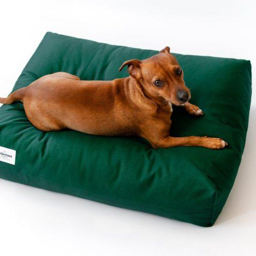 Doze koiranpeti vihreä