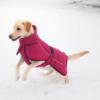 Punainen tyylikäs takki koiralle