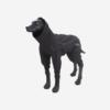 Musta Rukka Protect haalari koiralle