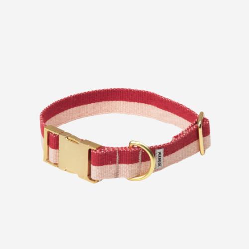 Vaaleanpunainen koiran panta
