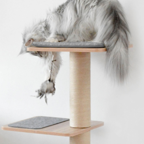 Moderni ja laadukas kissan kiipeilypuu