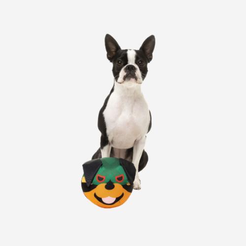 Vinkuva koiran pehmolelu