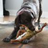 Rapiseva lelu koiralle