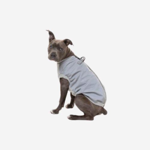 Heijastava ja vuorattu takki koiralle