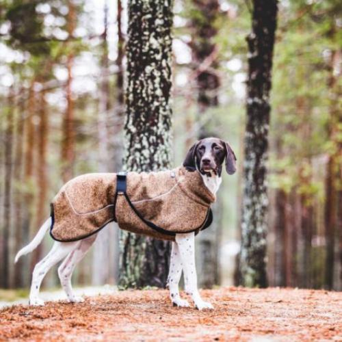 Lämmin takki koiralle