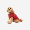 Punainen huppari koiralle